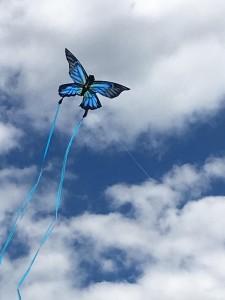 butterfly-kite